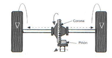 Estructura del puente trasero.